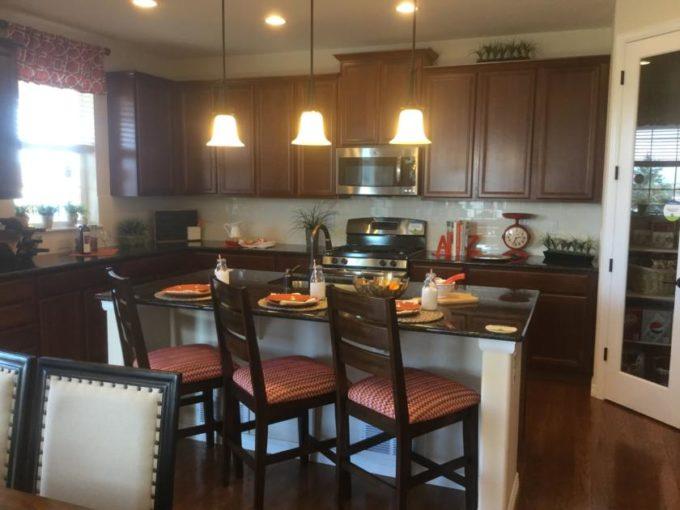 new home Copperleaf in Aurora